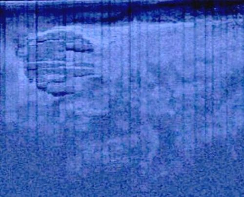 Mysterious UFO-like object spotted on sea floor