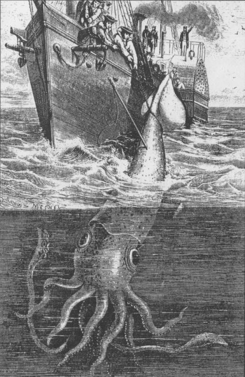 לויתן זרע תוקף דיונן ענק - Sperm whale Vs giant squid