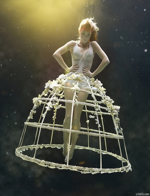 zena holloway underwater photography