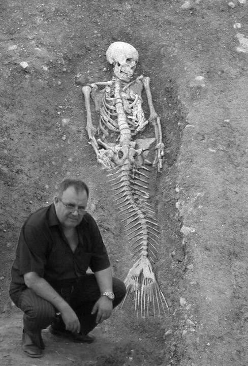 בת הים הקטנה - אגדה או מציאות???