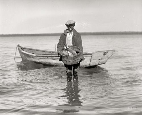 "1920 | ""Shad fishing on the Potomac """