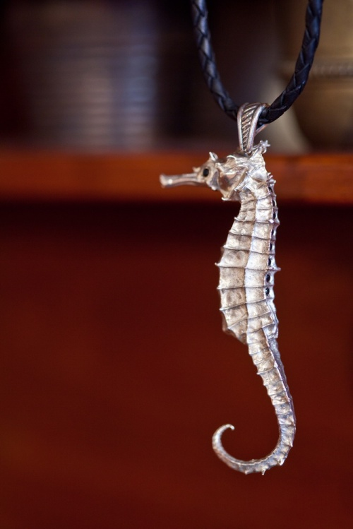 Ocean Spirit Collection Silver black oniks seahorse  Jewelry