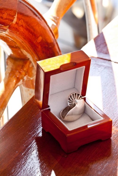 Ocean Spirit Collection  Silver Nautilus