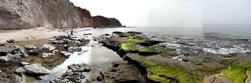 שבוע החפירות הארכיאולוגיות  התת ימיות בקרקעית המעגנה המכונה נמל אפולוניה (ארשוף) חוף הים מצפון לאפולוניה. מבט לכיוון דרום. צילום יפתח קוזיק