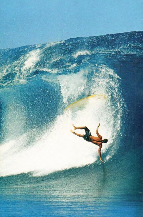 גלישת גלים  לונגבורד - Longboard Surfing