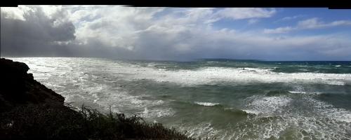 סידני עלי אפולוניה 11 12 2013