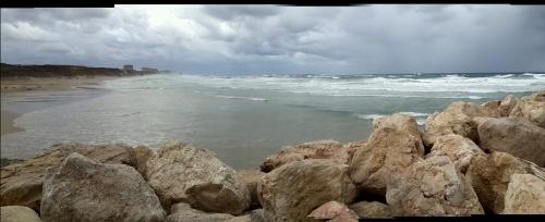 """""""קסים המקסים"""" -  מרינה הרצליה החוף הדרומי 11.12.2013 צילום: יפתח קוזיק"""